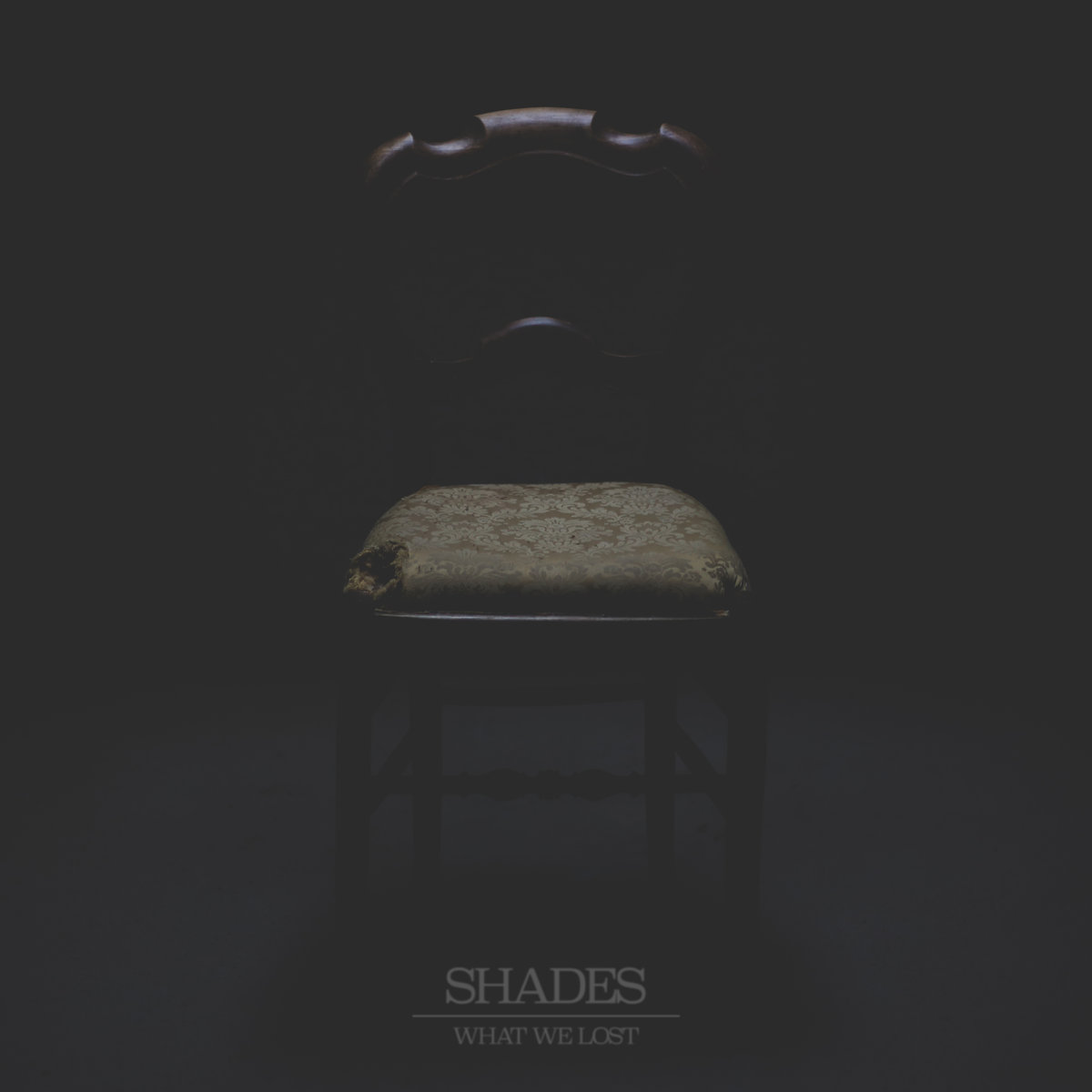 What We Lost – Shades